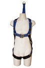 Globestock Rescue Harness