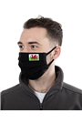 Pack of 2x 'Wales' Two Layer Reusable Cotton Face Masks