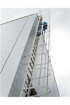 AC351 Rung Mounted Permanent Vertical Fall Arrest System
