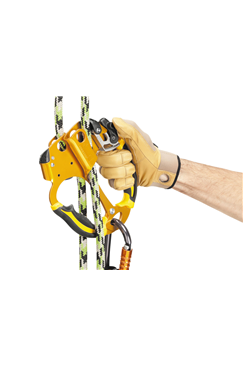 PETZL B19AAA Ascentree Rope Clamp