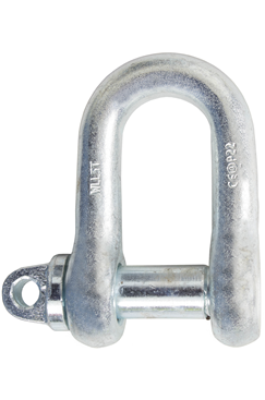0.5 Ton Steel D Shackle
