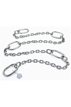 500kg WLL Stainless Steel Pump Lifting Chain