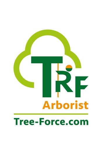 Arborist Steel Core 2mtr Work Positioning Lanyard